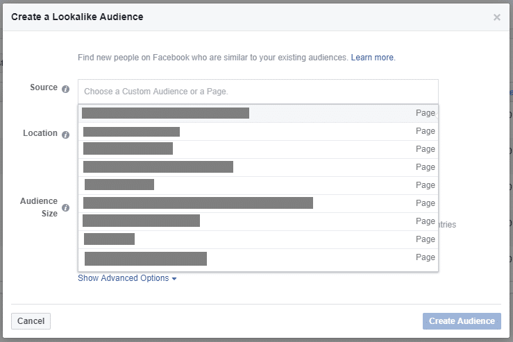 Create a Facebook lookalike audience with page fans
