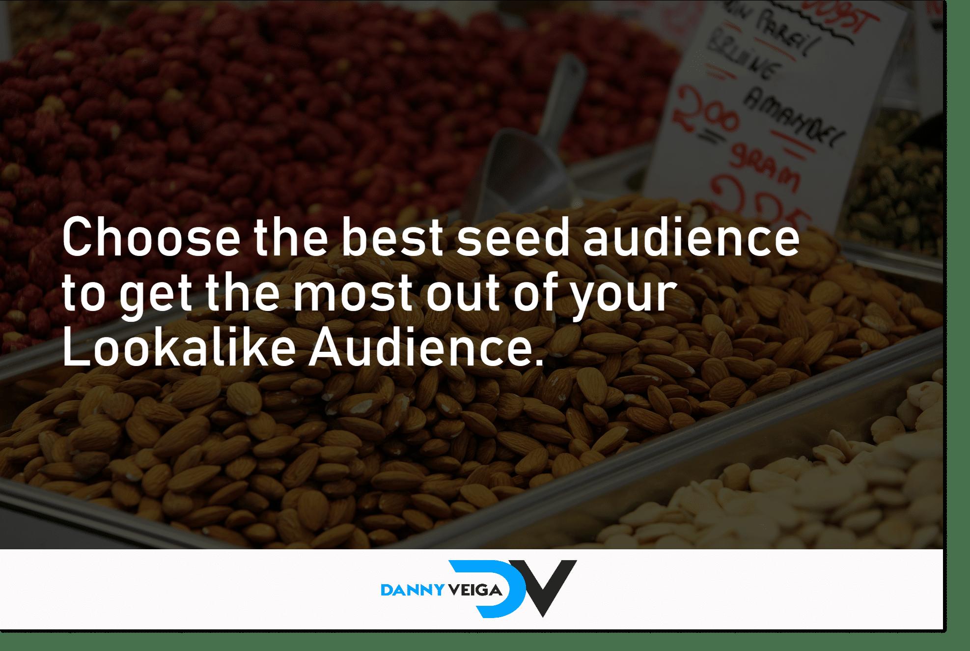 best seed audience lookalike audience