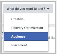 split testing audience on Facebook